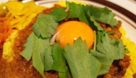チキン&キーマ2種盛りカレー|ウミネコカレー(幡ヶ谷)