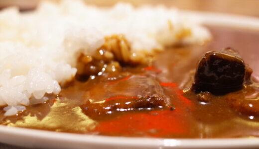 煮干しカレーライス 中華そばふくもり(日比谷)